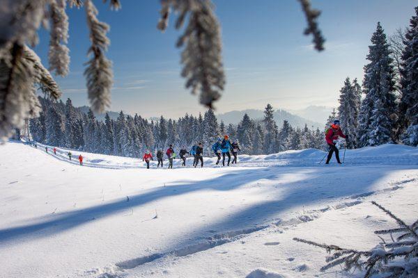 Zimowy Janosik